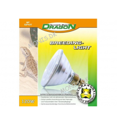 Dragon Breeding Light 120 W