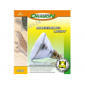 Dragon Breeding Light 60w
